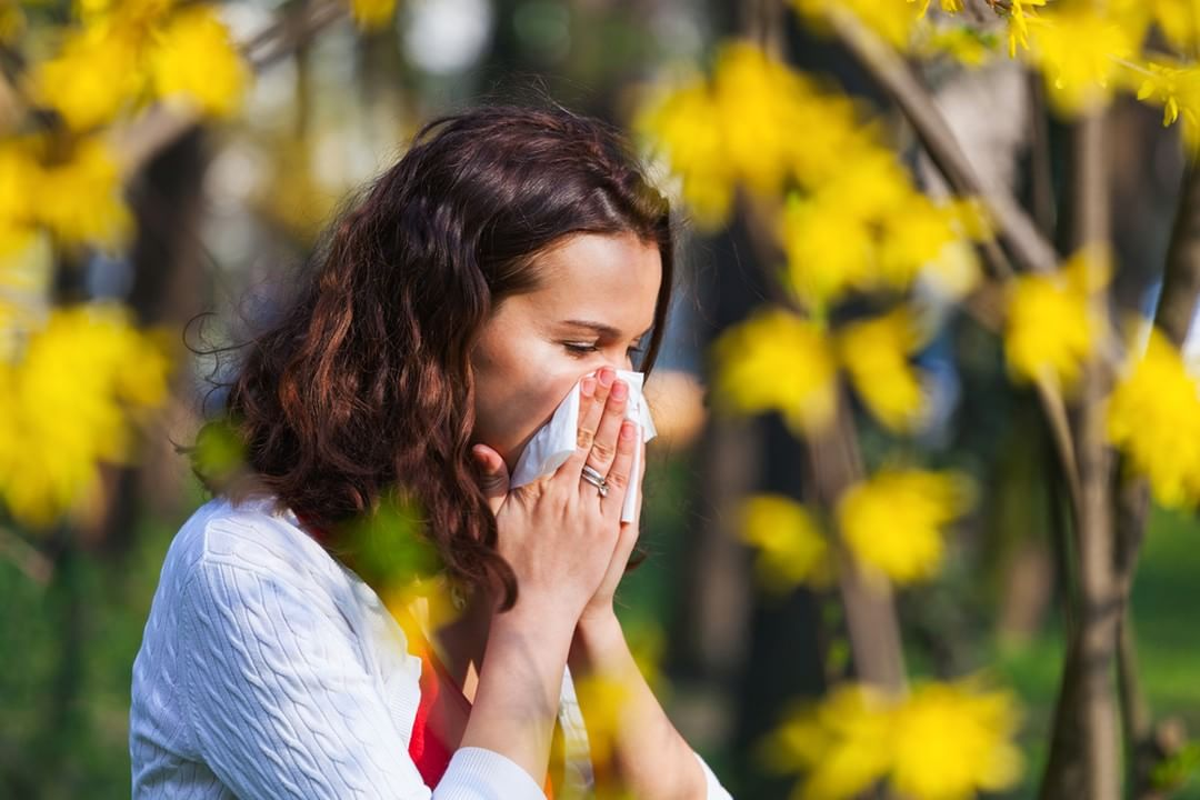 Recovered from Spring Allergy