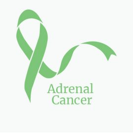 Treatment for Adrenal Cancer
