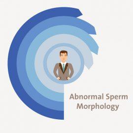 Treatment for Abnormal Sperm Morphology