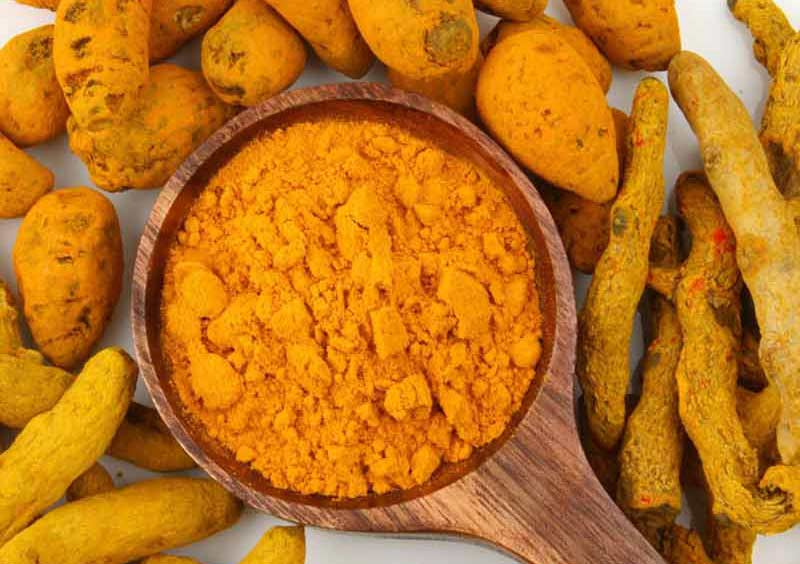 Effect of Curcuma Longa Extract in Treating Diseases