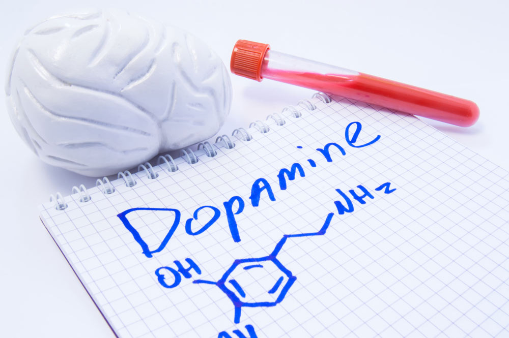 Dopamine Agonists Link with Parkinson's Disease